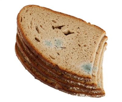 Wie Bleibt Brot Länger Frisch