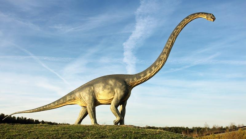 Vor Wie Vielen Jahren Lebten Die Dinosaurier